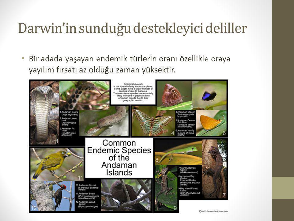 Darwin'in sunduğu destekleyici deliller Bir adada yaşayan endemik türlerin oranı özellikle oraya yayılım fırsatı az olduğu zaman yüksektir.