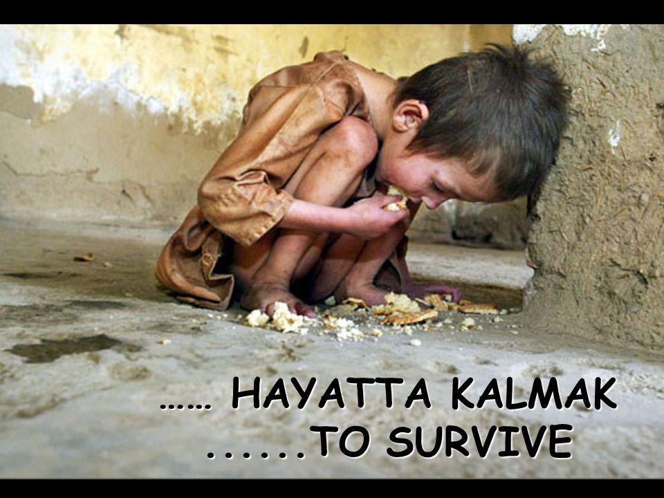 …… HAYATTA KALMAK......TO SURVIVE