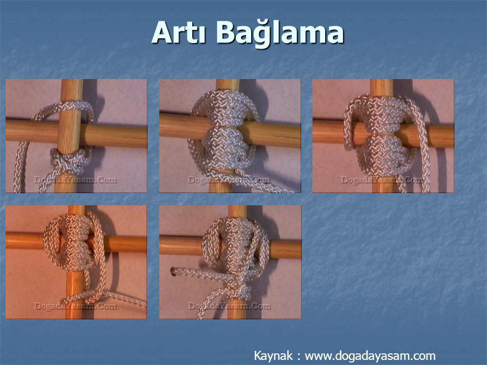 Artı Bağlama Kaynak : www.dogadayasam.com
