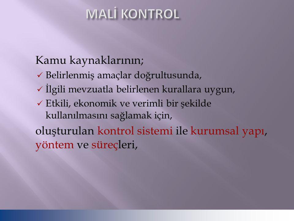 Kontrol ortamının temel unsuru kurum ve insan dır.
