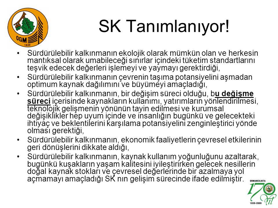 SK Tanımlanıyor! Sürdürülebilir kalkınmanın ekolojik olarak mümkün olan ve herkesin mantıksal olarak umabileceği sınırlar içindeki tüketim standartlar
