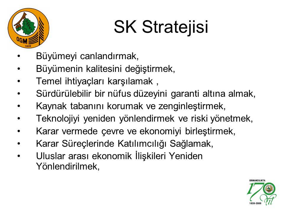 SK Stratejisi Büyümeyi canlandırmak, Büyümenin kalitesini değiştirmek, Temel ihtiyaçları karşılamak, Sürdürülebilir bir nüfus düzeyini garanti altına almak, Kaynak tabanını korumak ve zenginleştirmek, Teknolojiyi yeniden yönlendirmek ve riski yönetmek, Karar vermede çevre ve ekonomiyi birleştirmek, Karar Süreçlerinde Katılımcılığı Sağlamak, Uluslar arası ekonomik İlişkileri Yeniden Yönlendirilmek,