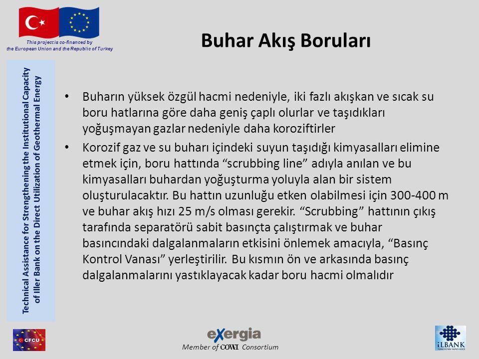 Member of Consortium This project is co-financed by the European Union and the Republic of Turkey Buhar Akış Boruları Buharın yüksek özgül hacmi neden