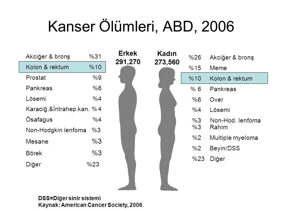 Kanser Ölümleri, ABD, 2006 DSS=Diğer sinir sistemi Kaynak: American Cancer Society, 2006. Erkek 291,270 Kadın 273,560 %26Akciğer & bronş %15Meme %10Ko