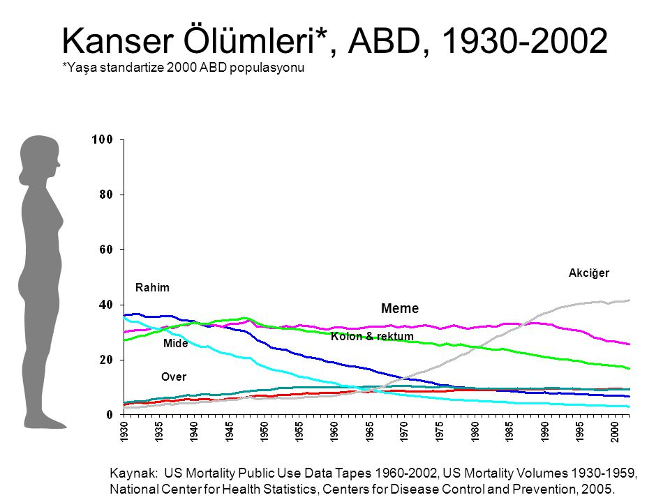 Kanser Ölümleri*, ABD, 1930-2002 Akciğer Kolon & rektum Rahim Mide Meme Over *Yaşa standartize 2000 ABD populasyonu Kaynak: US Mortality Public Use Data Tapes 1960-2002, US Mortality Volumes 1930-1959, National Center for Health Statistics, Centers for Disease Control and Prevention, 2005.