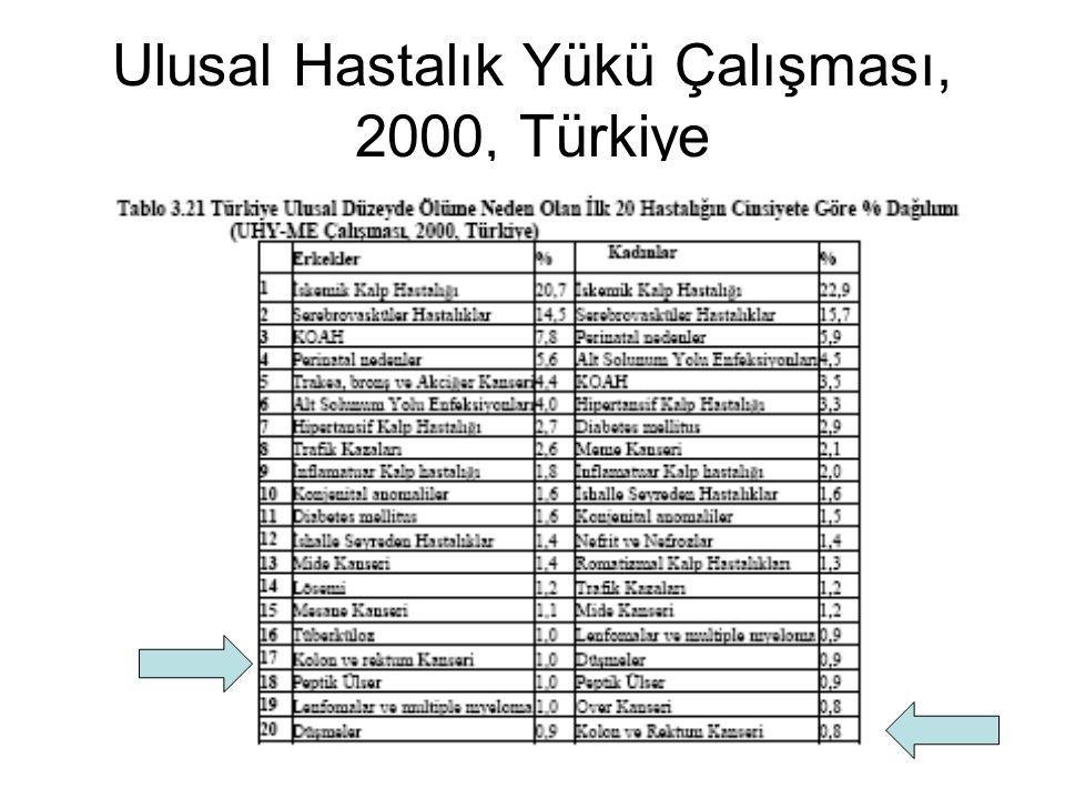 Ulusal Hastalık Yükü Çalışması, 2000, Türkiye