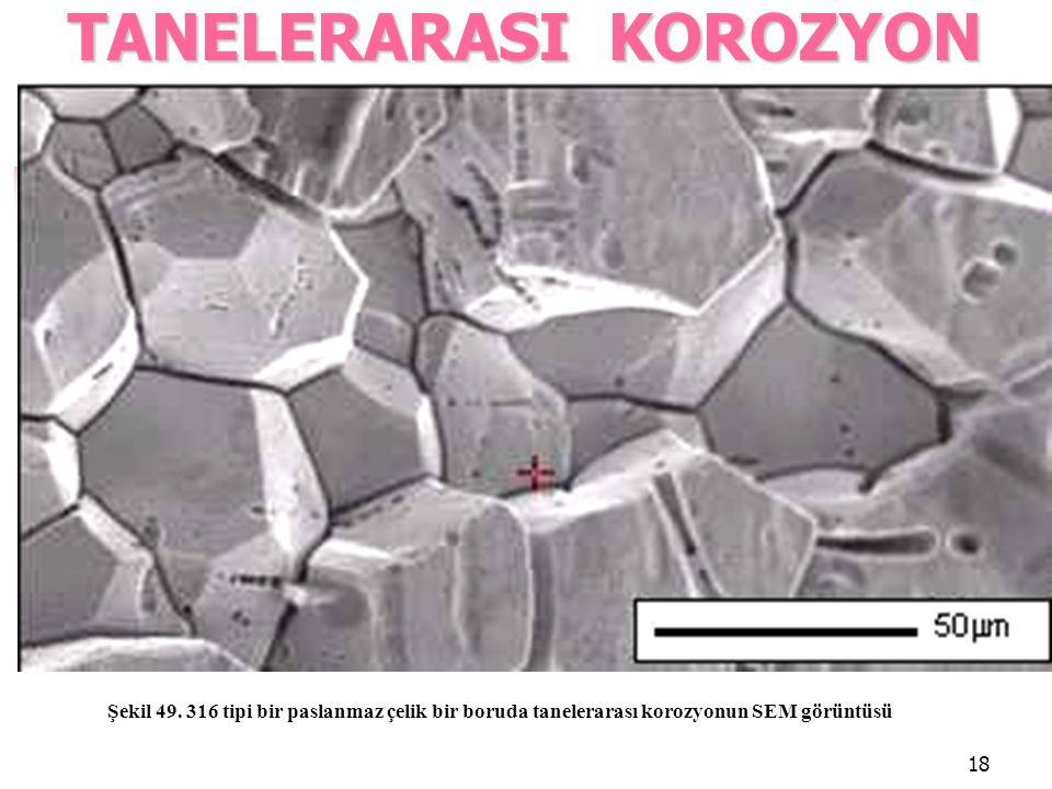 18 TANELERARASI KOROZYON Şekil 49. 316 tipi bir paslanmaz çelik bir boruda tanelerarası korozyonun SEM görüntüsü