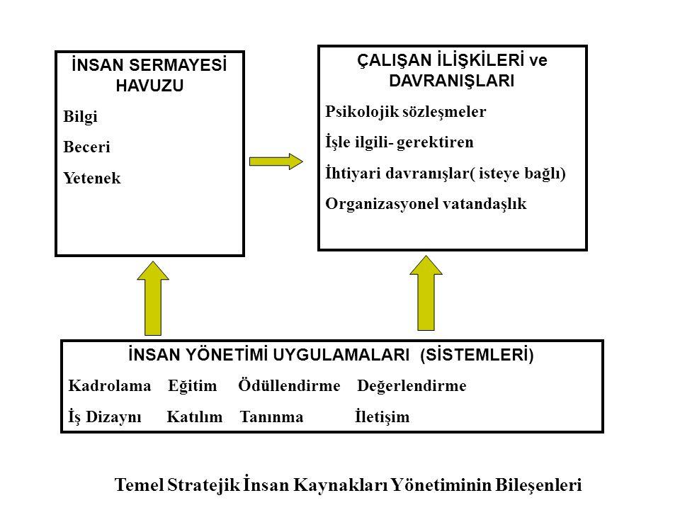 Modelde bir firma 3 bölümden herhangi birinde üstün bir pozisyona erişebilir.