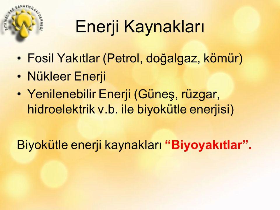Enerji Kaynakları Fosil Yakıtlar (Petrol, doğalgaz, kömür) Nükleer Enerji Yenilenebilir Enerji (Güneş, rüzgar, hidroelektrik v.b.