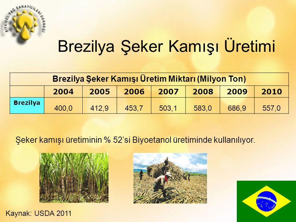 Brezilya Şeker Kamışı Üretimi Brezilya Şeker Kamışı Üretim Miktarı (Milyon Ton) 2004200520062007200820092010 Brezilya 400,0412,9453,7503,1583,0686,9557,0 Şeker kamışı üretiminin % 52'si Biyoetanol üretiminde kullanılıyor.