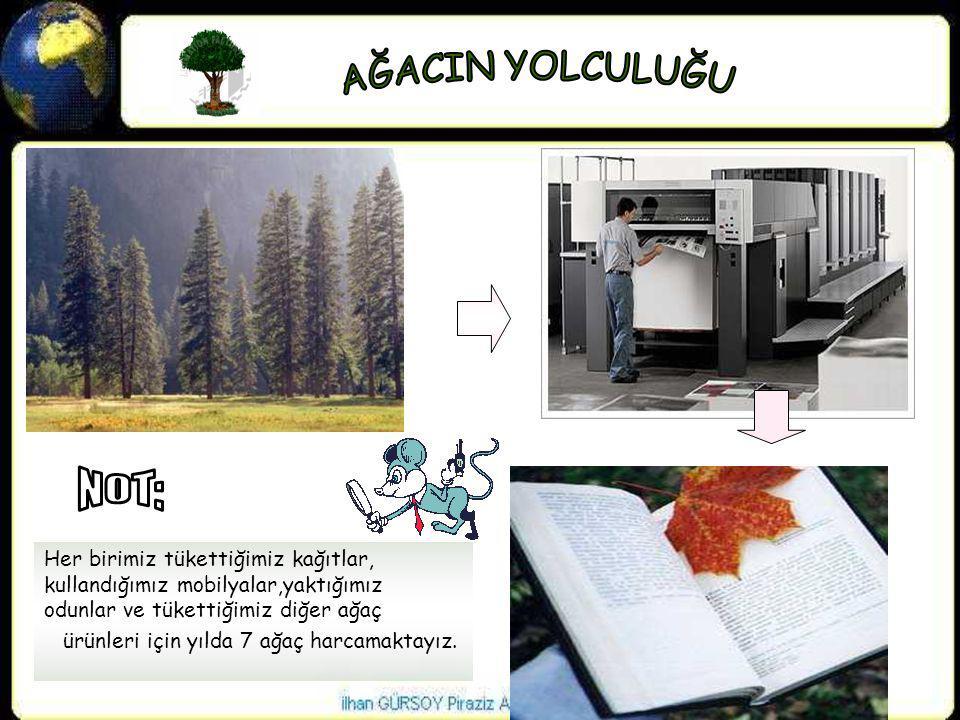 Her birimiz tükettiğimiz kağıtlar, kullandığımız mobilyalar,yaktığımız odunlar ve tükettiğimiz diğer ağaç ürünleri için yılda 7 ağaç harcamaktayız.
