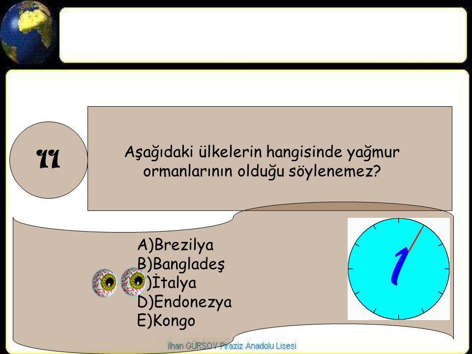 11 Aşağıdaki ülkelerin hangisinde yağmur ormanlarının olduğu söylenemez? A)Brezilya B)Bangladeş C)İtalya D)Endonezya E)Kongo