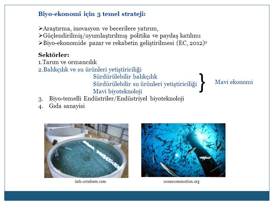 Biyo-ekonomi için 3 temel strateji:  Araştırma, inovasyon ve becerilere yatırım,  Güçlendirilmiş/uyumlaştırılmış politika ve paydaş katılımı  Biyo-ekonomide pazar ve rekabetin geliştirilmesi (EC, 2012) 2 Sektörler: 1.Tarım ve ormancılık 2.Balıkçılık ve su ürünleri yetiştiriciliği Sürdürülebilir balıkçılık Sürdürülebilir su ürünleri yetiştiriciliği Mavi biyoteknoloji 3.