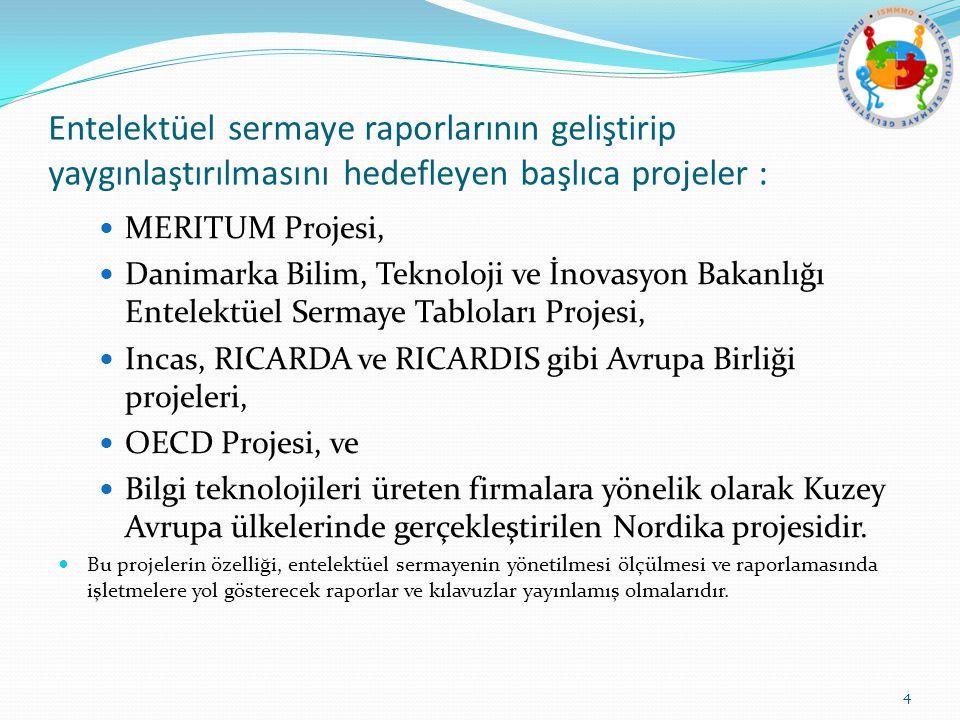 Entelektüel sermaye raporlarının geliştirip yaygınlaştırılmasını hedefleyen başlıca projeler : MERITUM Projesi, Danimarka Bilim, Teknoloji ve İnovasyon Bakanlığı Entelektüel Sermaye Tabloları Projesi, Incas, RICARDA ve RICARDIS gibi Avrupa Birliği projeleri, OECD Projesi, ve Bilgi teknolojileri üreten firmalara yönelik olarak Kuzey Avrupa ülkelerinde gerçekleştirilen Nordika projesidir.