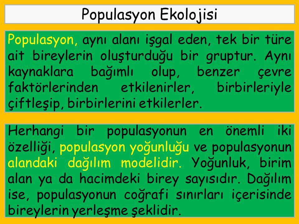 Populasyon Ekolojisi Populasyon, aynı alanı işgal eden, tek bir türe ait bireylerin oluşturduğu bir gruptur. Aynı kaynaklara bağımlı olup, benzer çevr