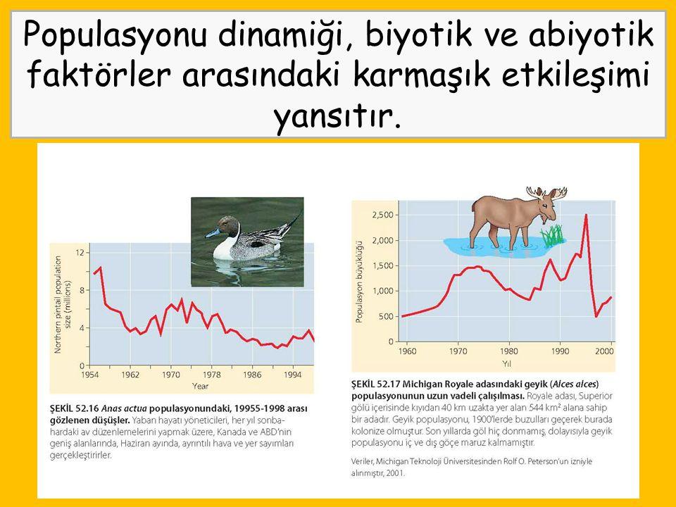 Populasyonu dinamiği, biyotik ve abiyotik faktörler arasındaki karmaşık etkileşimi yansıtır.