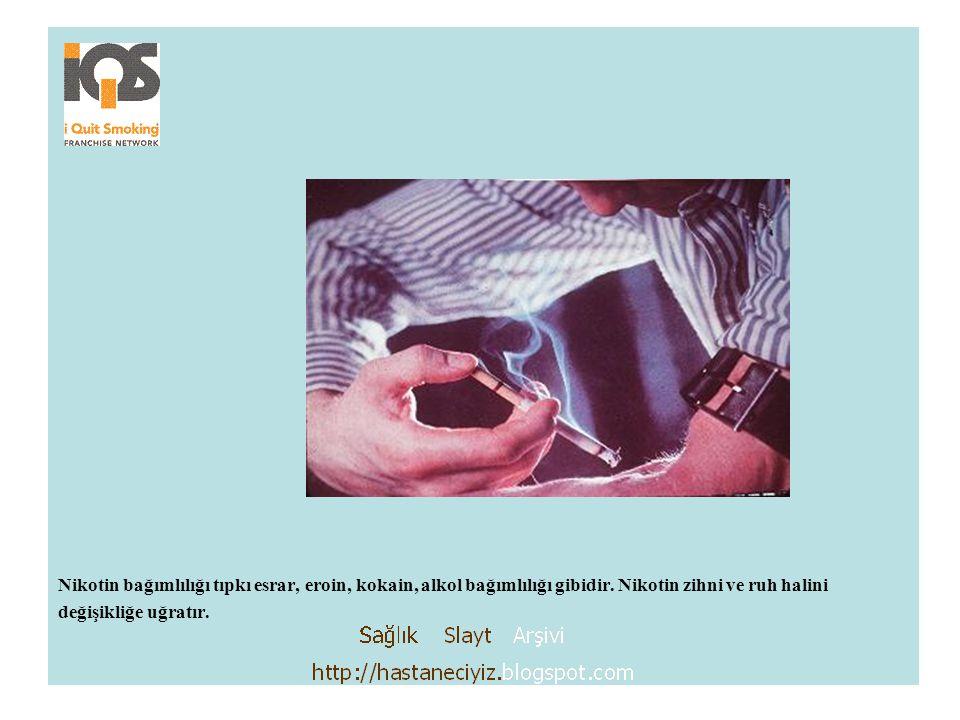 Nikotin bağımlılığı tıpkı esrar, eroin, kokain, alkol bağımlılığı gibidir. Nikotin zihni ve ruh halini değişikliğe uğratır.