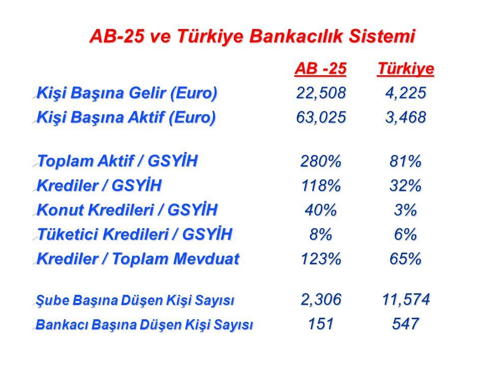 AB -25 Türkiye  Kişi Başına Gelir (Euro) 22,5084,225  Kişi Başına Aktif (Euro) 63,0253,468  Toplam Aktif / GSYİH 280%81%  Krediler / GSYİH 118%32%