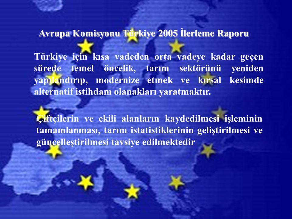 Türkiye için kısa vadeden orta vadeye kadar geçen sürede temel öncelik, tarım sektörünü yeniden yapılandırıp, modernize etmek ve kırsal kesimde alternatif istihdam olanakları yaratmaktır.