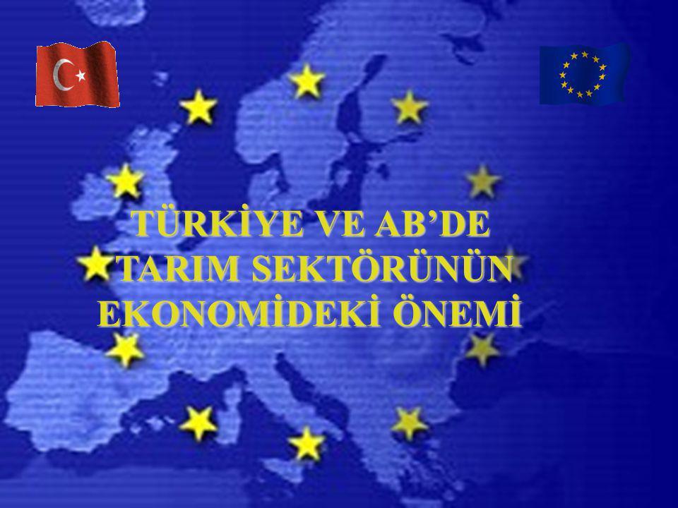 Türkiye İçin Katılım Ortaklığı Belgesi 2005 : AB kırsal kalkınma araçlarının işletilmesi için gerekli yasal düzenlemelerin yapılması ve uygun idari yapıların oluşturulması