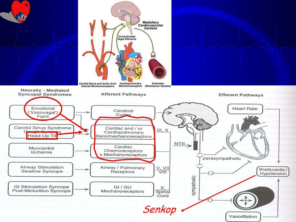 12 Nöral aracılı Senkop Sınıflandırma Vazovagal senkop Karotis sinüs senkopu Durumsal senkop –Akut hemoraji –Öksürük hapşırma –Gastrointestinal uyarı(