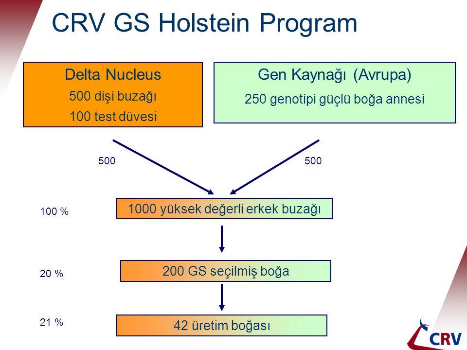 CRV GS Holstein Program Delta Nucleus 500 dişi buzağı 100 test düvesi Gen Kaynağı (Avrupa) 250 genotipi güçlü boğa annesi 1000 yüksek değerli erkek bu