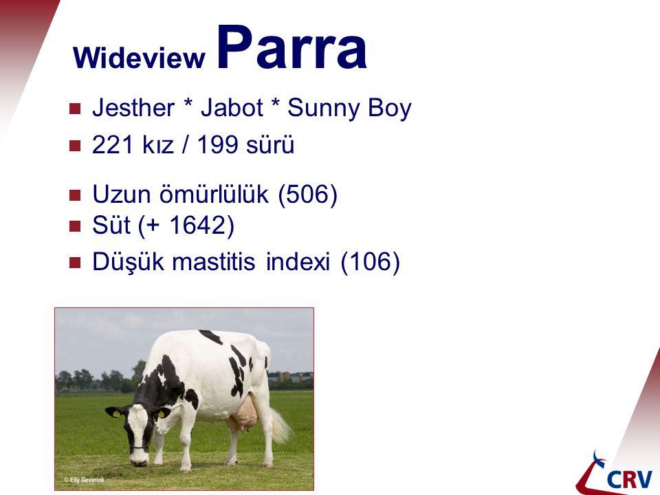 Wideview Parra  Jesther * Jabot * Sunny Boy  221 kız / 199 sürü  Uzun ömürlülük (506)  Süt (+ 1642)  Düşük mastitis indexi (106)