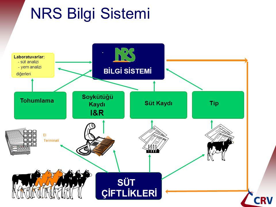 NRS Bilgi Sistemi diğerleri Tohumlama Soykütüğü Kaydı Süt KaydıTipTip I&R SÜT ÇİFTLİKLERİ El Terminali Laboratuvarlar: - süt analizi - yem analizi BİL