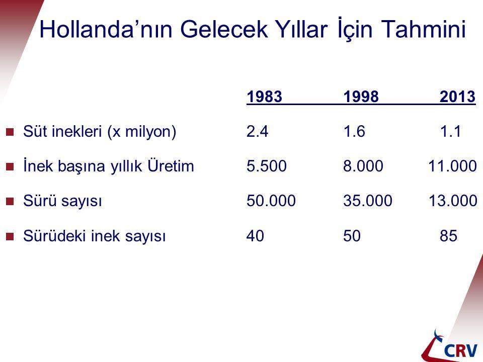 Hollanda'nın Gelecek Yıllar İçin Tahmini 198319982013  Süt inekleri (x milyon)2.41.61.1  İnek başına yıllık Üretim5.5008.000 11.000  Sürü sayısı50.