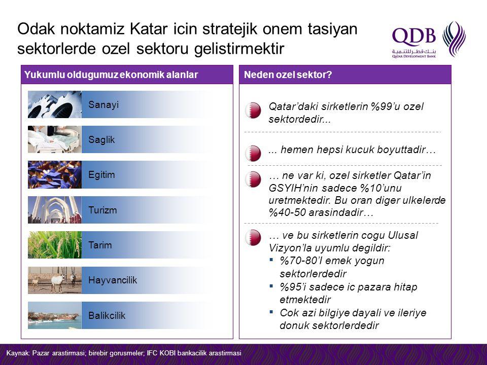 Neden ozel sektor?Yukumlu oldugumuz ekonomik alanlar Qatar'daki sirketlerin %99'u ozel sektordedir...