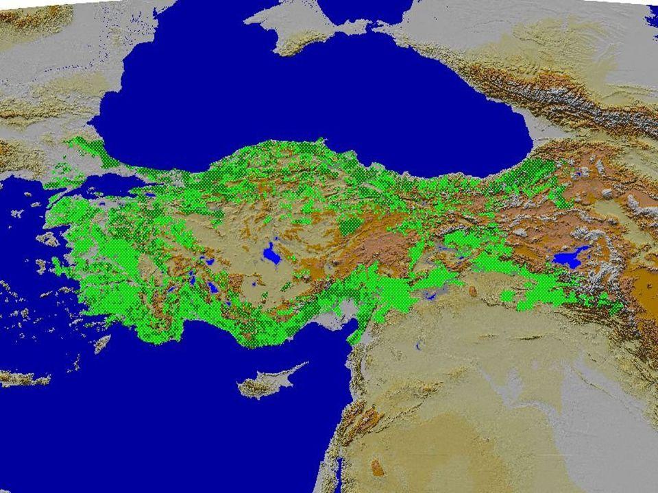 ORMANLARDAN YARARLANMA: Yeryüzü karalarının halen yüzde 30 kadarını kapladığı sanılan ormanlar insanın yaşamında tarih boyunca önemli bir rol oynamıştır; hala da oynamaktadırlar.