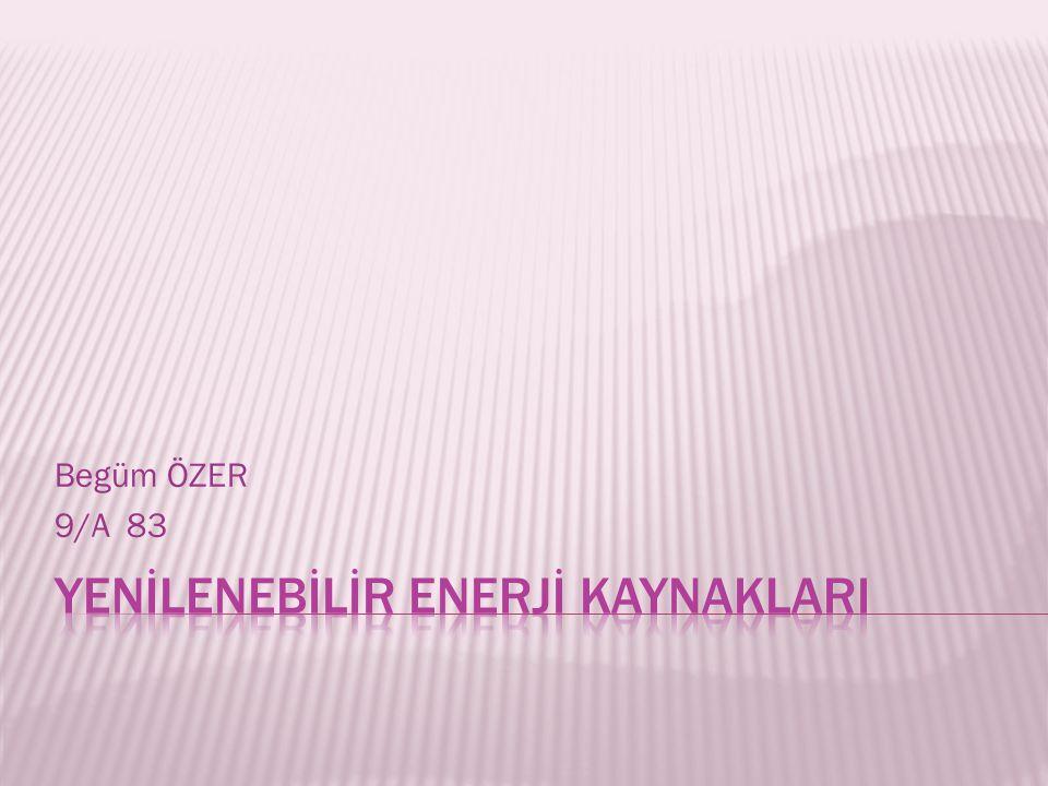 Begüm ÖZER 9/A 83