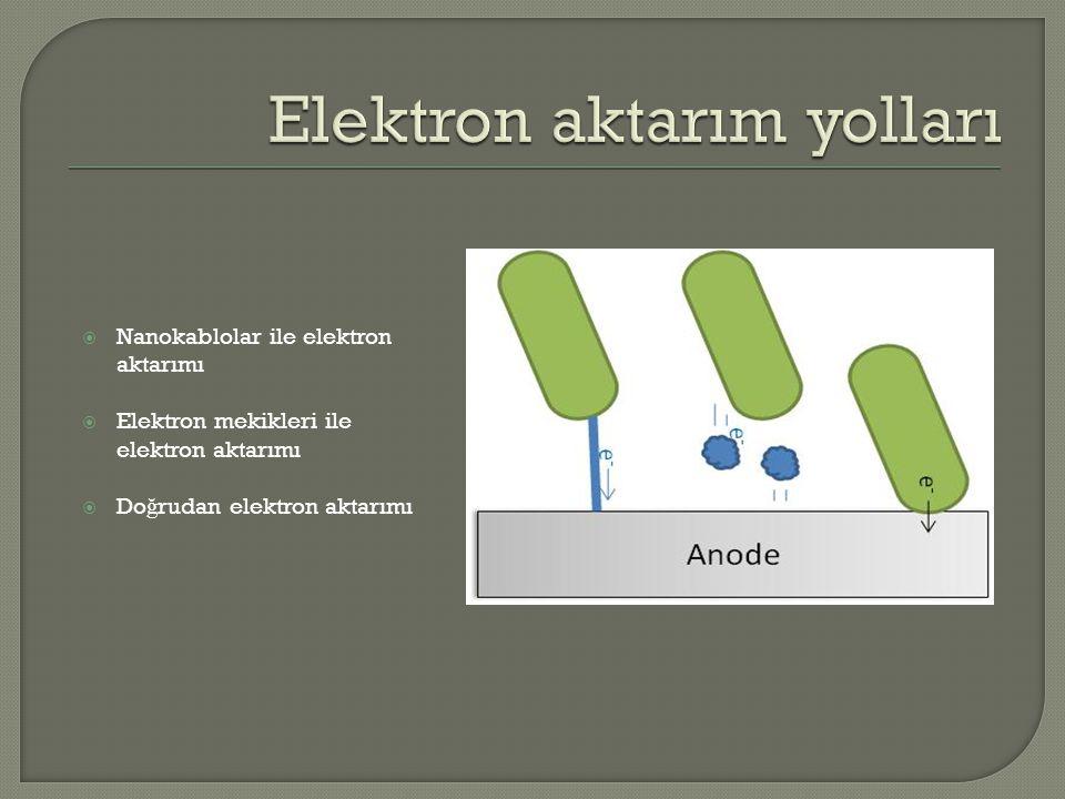  Nanokablolar ile elektron aktarımı  Elektron mekikleri ile elektron aktarımı  Do ğ rudan elektron aktarımı