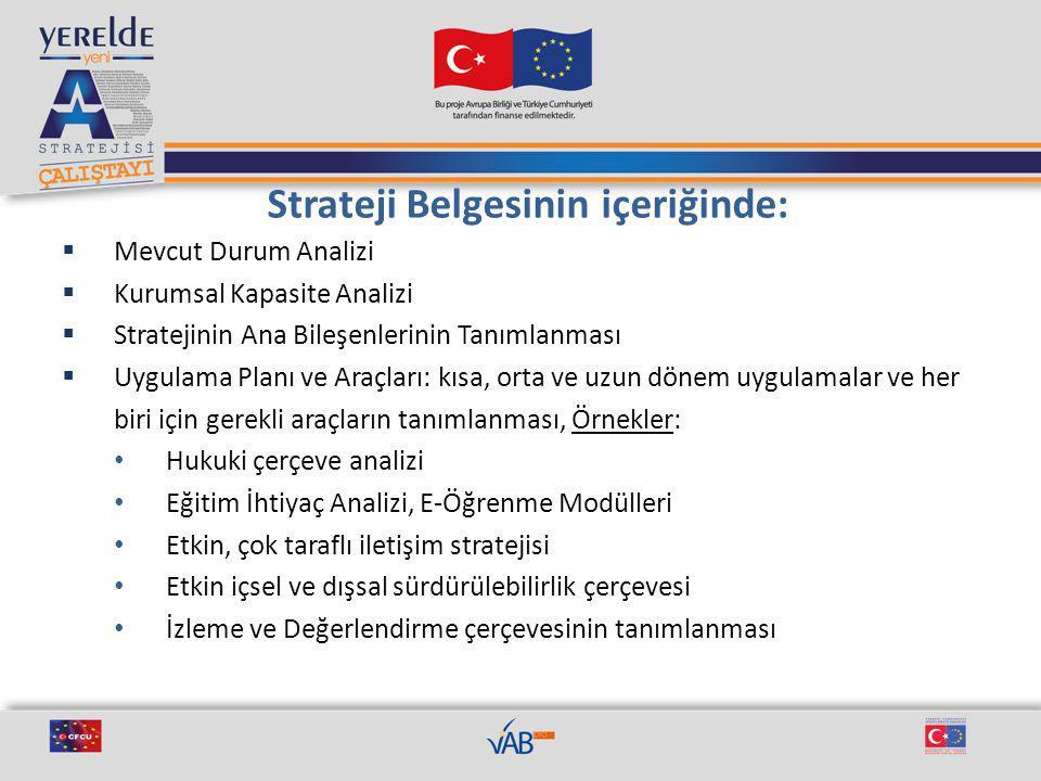 Vizyon Türkiye'nin Avrupa Birliği'ne katılım sürecini merkezî ve yerel düzeyde yönlendiren, bütüncül politikalar ve projeler üreten bir kurum olmak.