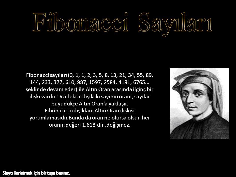 Fibonacci sayıları (0, 1, 1, 2, 3, 5, 8, 13, 21, 34, 55, 89, 144, 233, 377, 610, 987, 1597, 2584, 4181, 6765... şeklinde devam eder) ile Altın Oran ar
