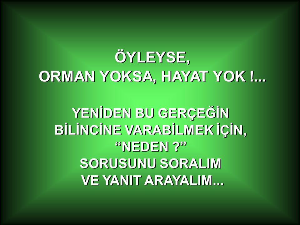 ÖYLEYSE, ORMAN YOKSA, HAYAT YOK !...