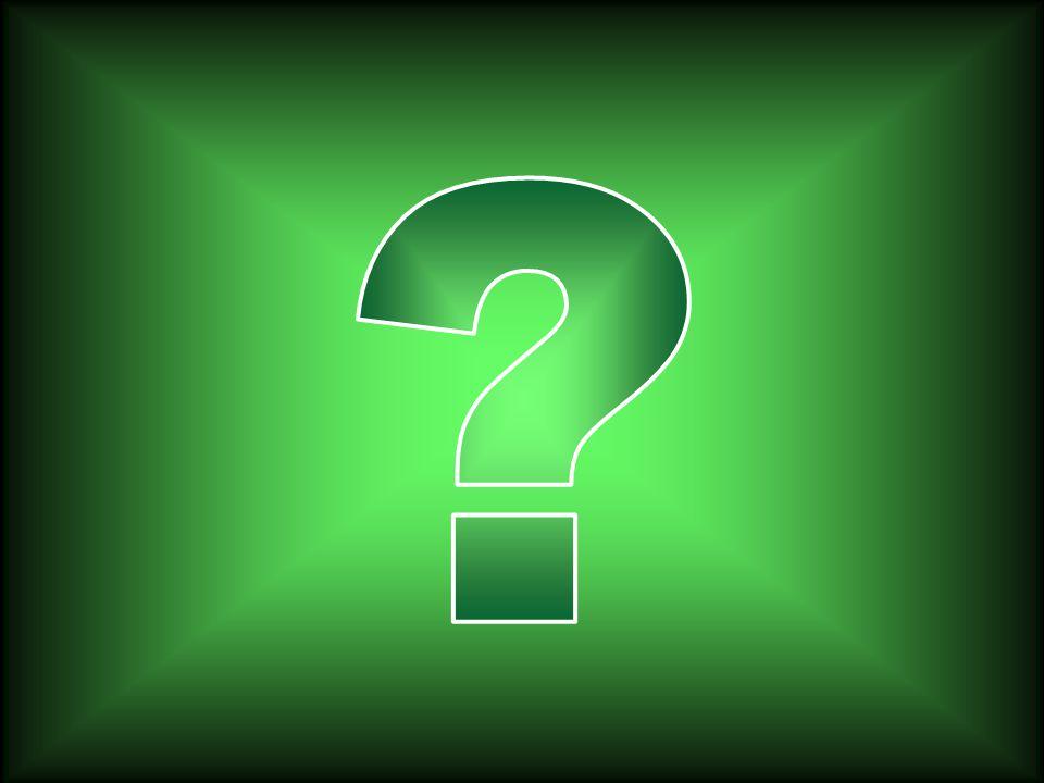 ORMANLAR AZALMAKTA... ORMANLAR AZALMAKTA... BUNDAN SONRA NE YAPACAĞIZ ? BUNDAN SONRA NE YAPACAĞIZ ?