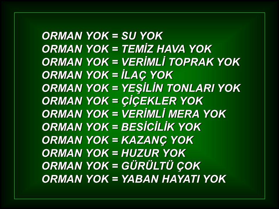 OYSA !... OYSA !...
