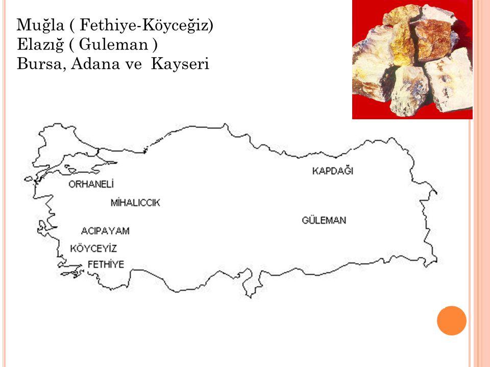 Muğla ( Fethiye-Köyceğiz) Elazığ ( Guleman ) Bursa, Adana ve Kayseri