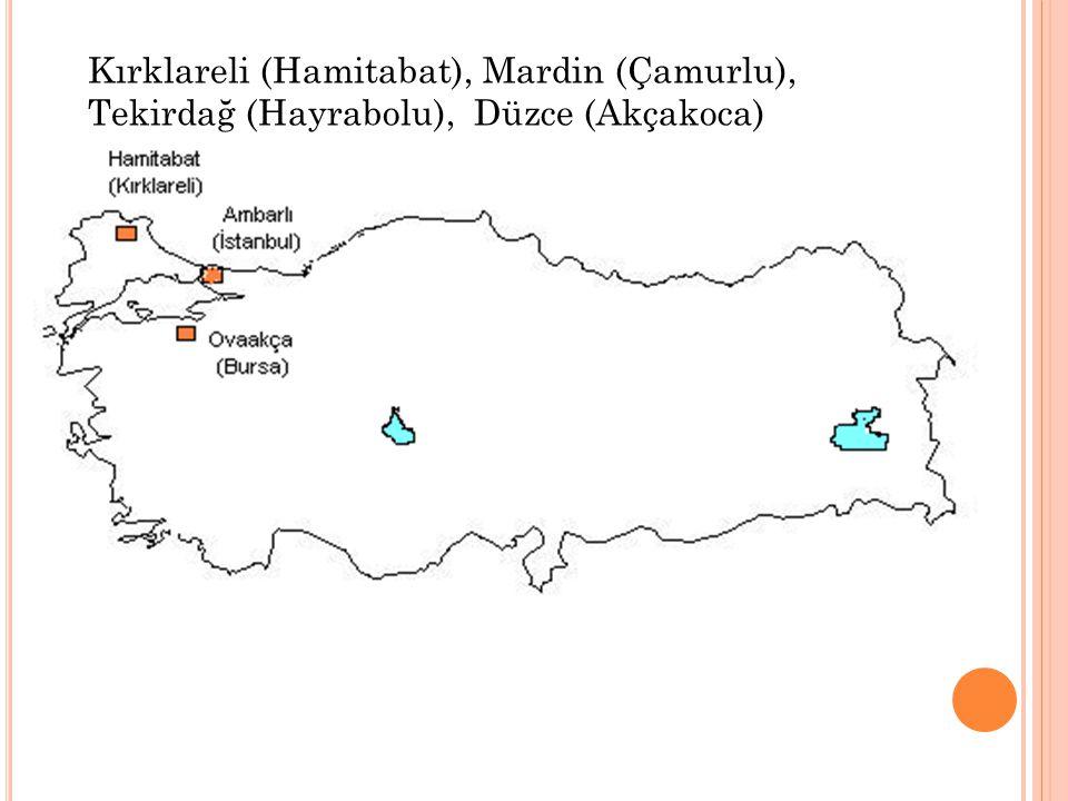 Kırklareli (Hamitabat), Mardin (Çamurlu), Tekirdağ (Hayrabolu), Düzce (Akçakoca)