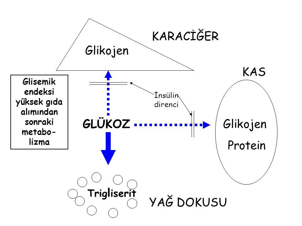 Glikojen Protein Trig l iserit KARACİĞER YAĞ DOKUSU KAS GLÜKOZ Glisemik endeksi yüksek gıda alımından sonraki metabo- lizma İnsülin direnci