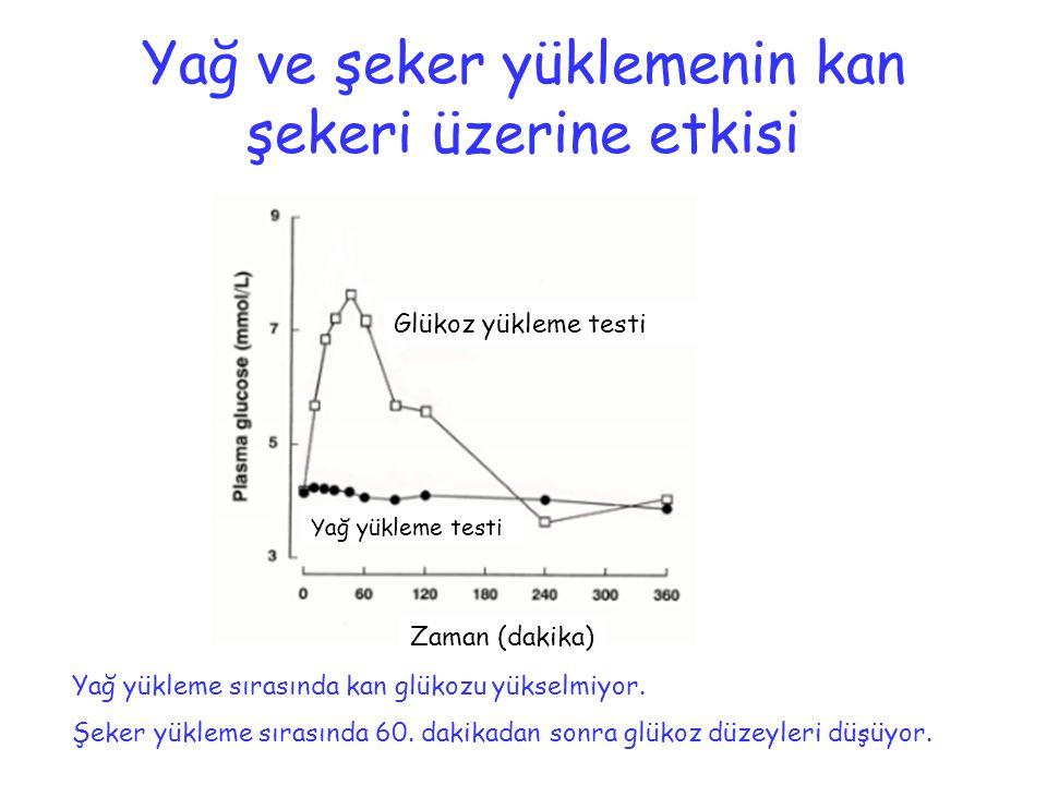 Yağ ve şeker yüklemenin kan şekeri üzerine etkisi Glükoz yükleme testi Yağ yükleme testi Zaman (dakika) Yağ yükleme sırasında kan glükozu yükselmiyor.