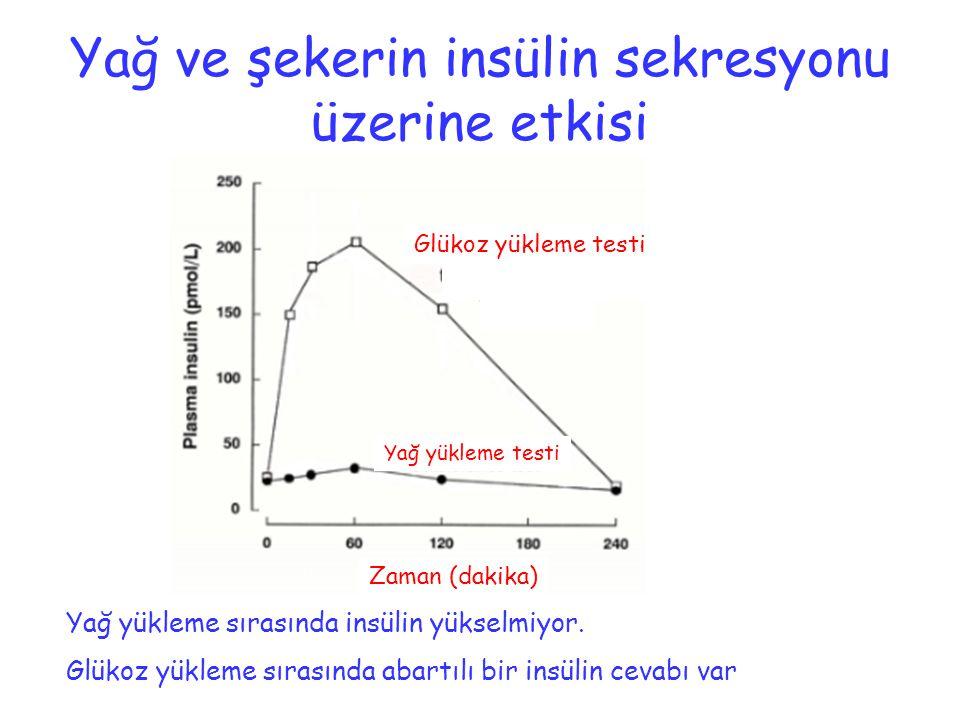 Yağ ve şekerin insülin sekresyonu üzerine etkisi Glükoz yükleme testi Yağ yükleme testi Zaman (dakika) Yağ yükleme sırasında insülin yükselmiyor. Glük