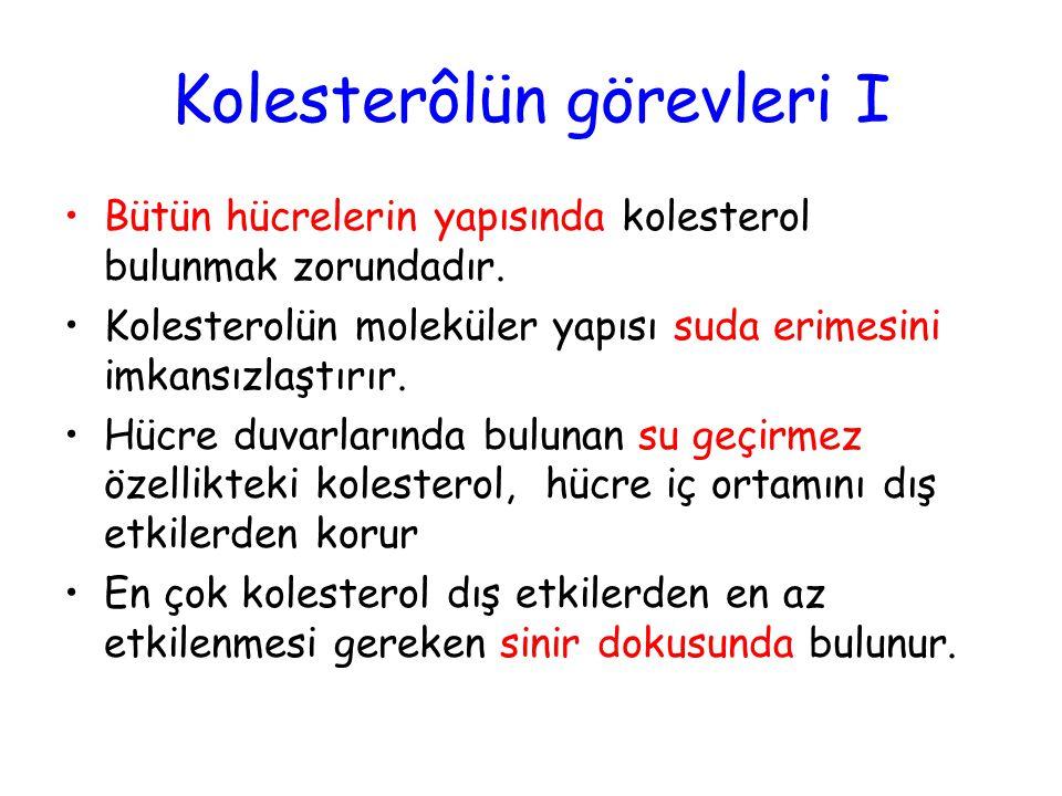 Kolesterôlün görevleri I Bütün hücrelerin yapısında kolesterol bulunmak zorundadır.