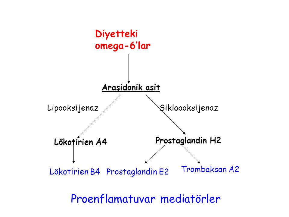 Araşidonik asit Lökotirien A4 Prostaglandin H2 Lökotirien B4Prostaglandin E2 Trombaksan A2 LipooksijenazSikloooksijenaz Diyetteki omega-6'lar Proenflamatuvar mediatörler