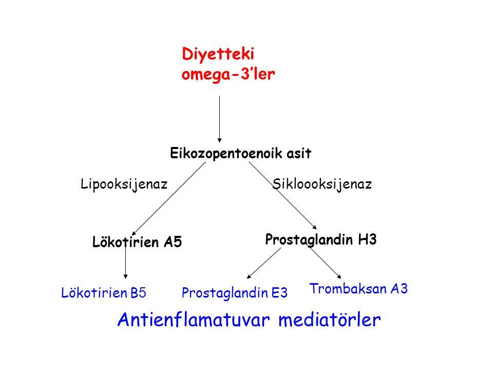 Eikozopentoenoik asit Lökotirien A5 Prostaglandin H3 Lökotirien B 5 Prostaglandin E3 Trombaksan A3 LipooksijenazSikloooksijenaz Diyetteki omega- 3 'l e r Antienflamatuvar mediatörler