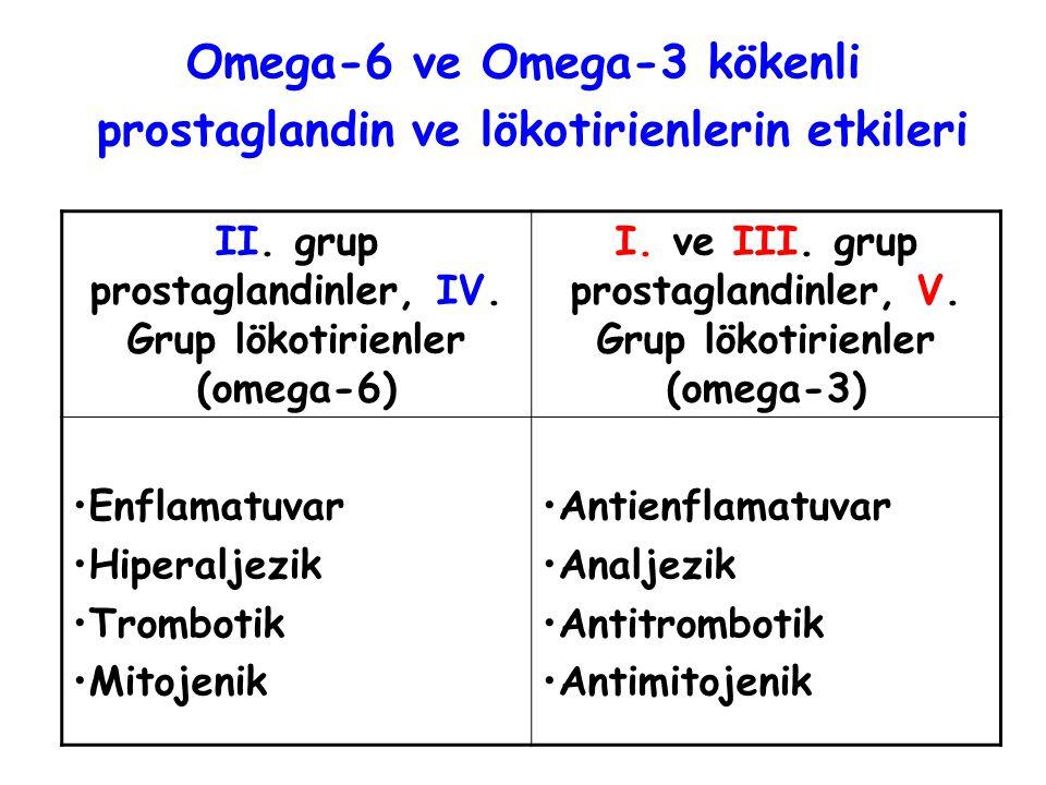 Omega-6 ve Omega-3 kökenli prostaglandin ve lökotirienlerin etkileri II.