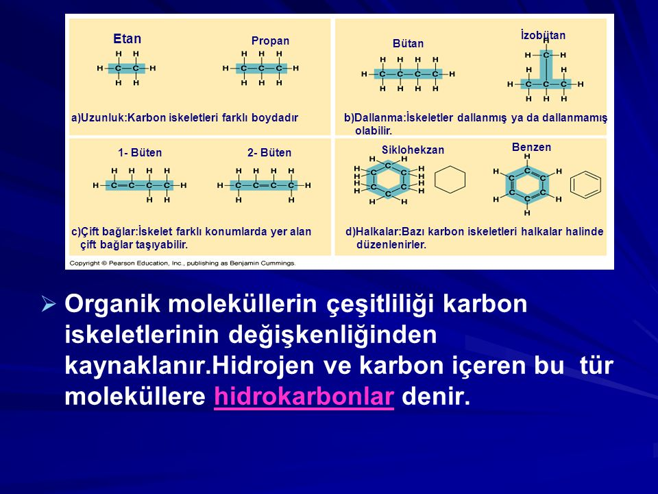   Organik moleküllerin çeşitliliği karbon iskeletlerinin değişkenliğinden kaynaklanır.Hidrojen ve karbon içeren bu tür moleküllere hidrokarbonlar de