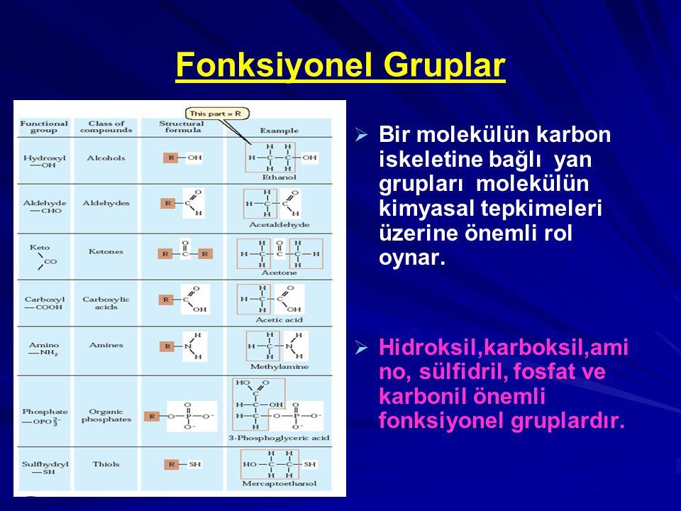 Fonksiyonel Gruplar   Bir molekülün karbon iskeletine bağlı yan grupları molekülün kimyasal tepkimeleri üzerine önemli rol oynar.   Hidroksil,karb