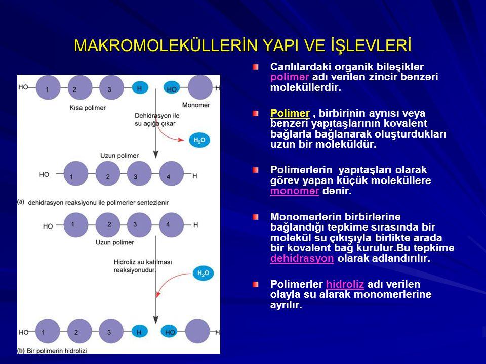 MAKROMOLEKÜLLERİN YAPI VE İŞLEVLERİ Canlılardaki organik bileşikler polimer adı verilen zincir benzeri moleküllerdir. Polimer, birbirinin aynısı veya